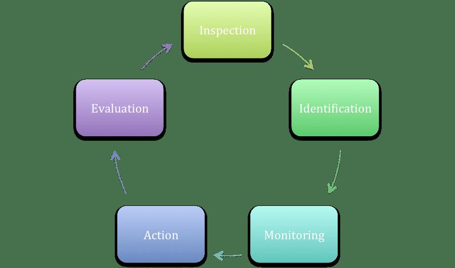 Process of IPM
